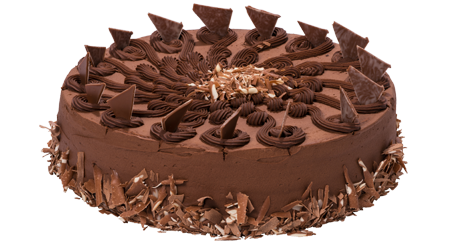 Chocolate Fudge Cake (B)